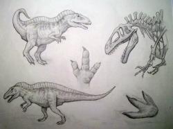 <I>Acrocanthosaurus</I>