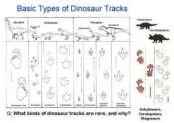 Track-types-worldwide