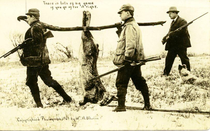 1909 Martin hens