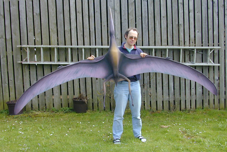 Radio controlled pterosaurs