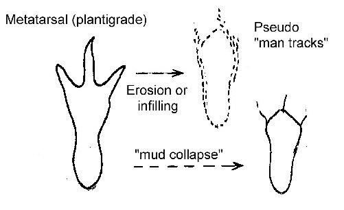 Pseudo-man-tracks diagram