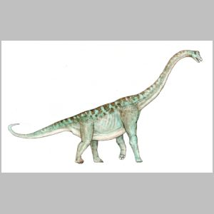 Acrocanthosaurus drawing